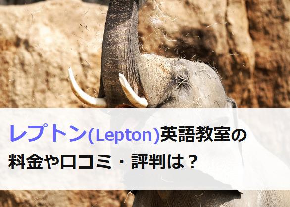 レプトン英語教室の料金と口コミ・評判